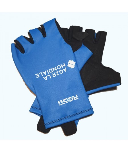 Blue Giro Gloves